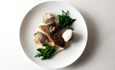striped bass and clams