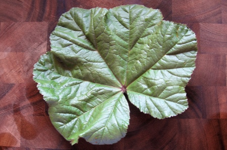 mallow leaf