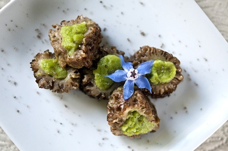 morel mushrooms stuffed with fresh fava beans