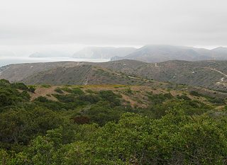 catalina island vista