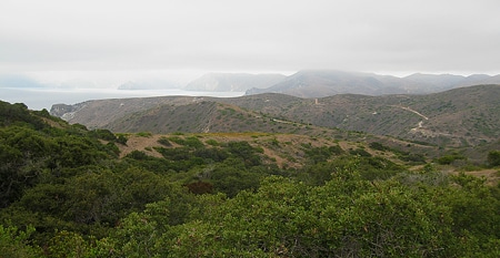catalina island vista