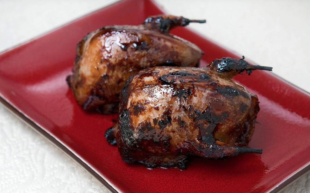 grilled doves teriyaki recipe