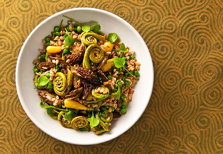 warm salad of morels, fiddleheads and farro recipe