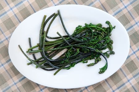 sauteed bracken fern fiddleheads