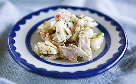 pheasant-salad with fennel