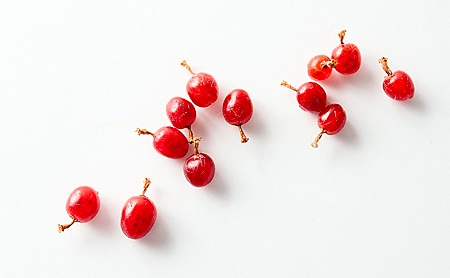 sierra red currants, ribes cereum