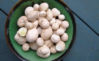 puffballs in a bowl