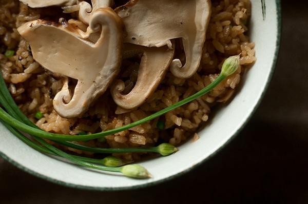 matsutake gohan recipe