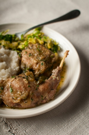 italian braised rabbit  recipe