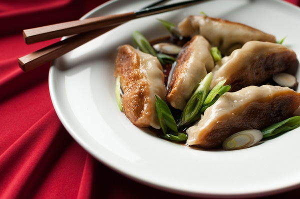 venison potstickers recipe