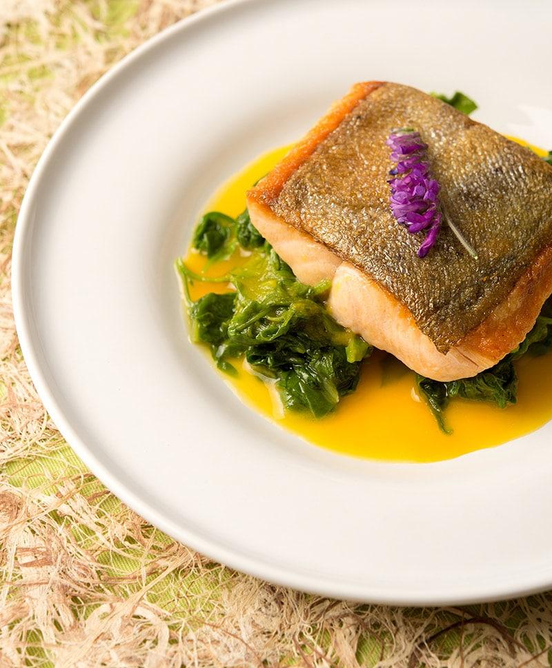 trout with saffron sauce