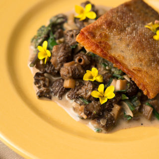 Trout and morels
