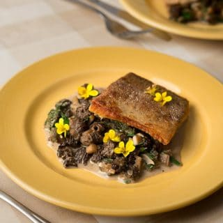 trout morels recipe