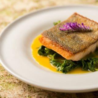 trout orange-saffron sauce recipe