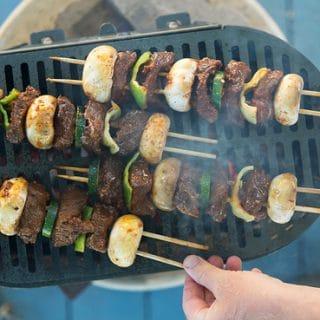 marinated venison kebabs recipe