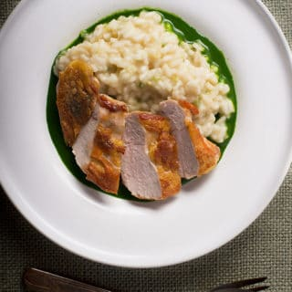 pheasant breast parsley sauce recipe