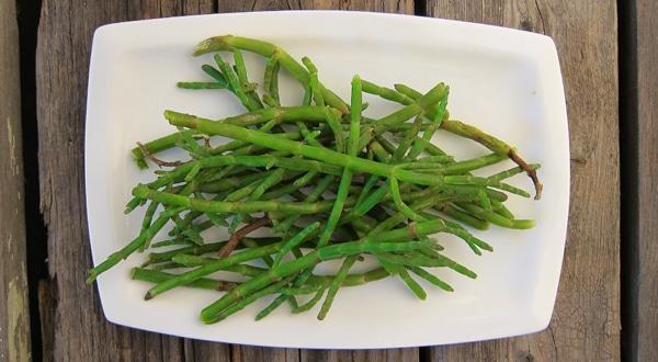 fresh sea beans