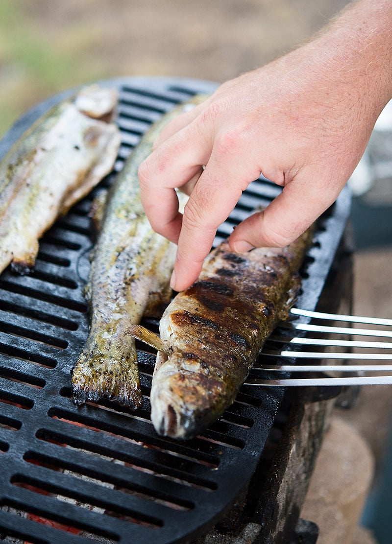 grilled trout on grill