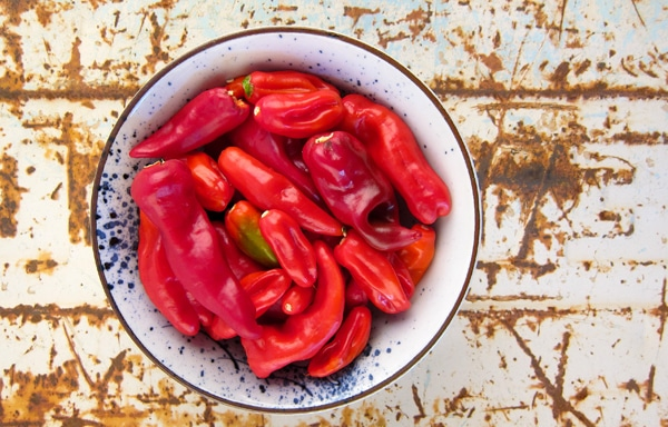 chiles for hot sauce