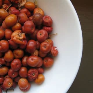 How to Eat Manzanita Berries