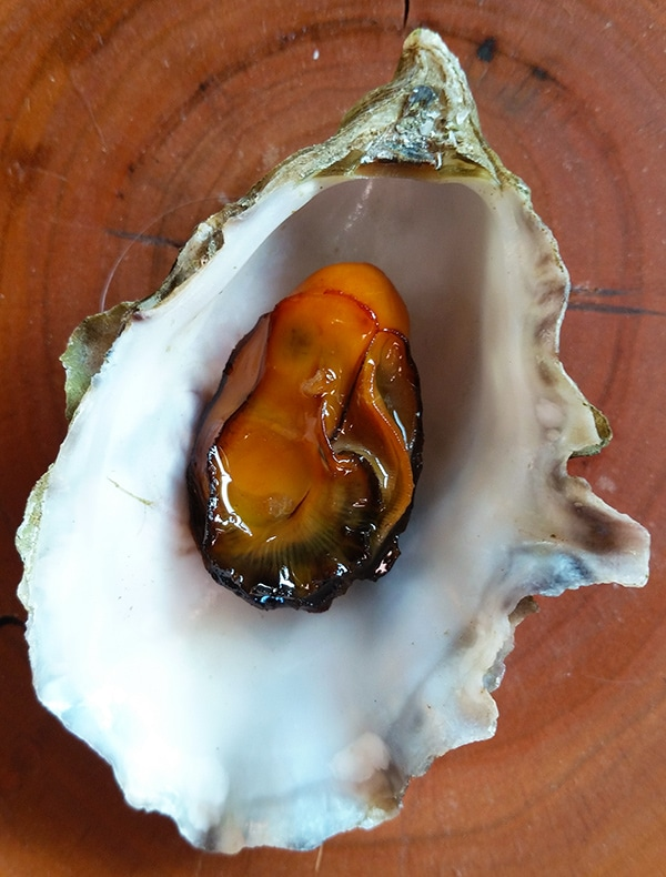 Smoked oysters recipe