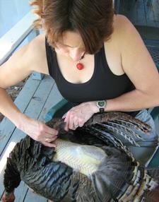 Holly plucking a wild turkey