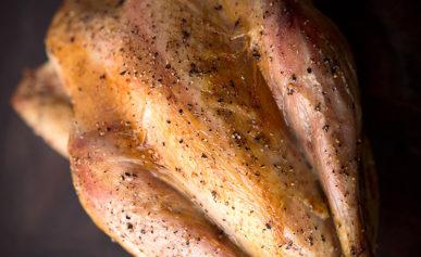 roast pheasant recipe