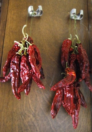Paprika peppers drying