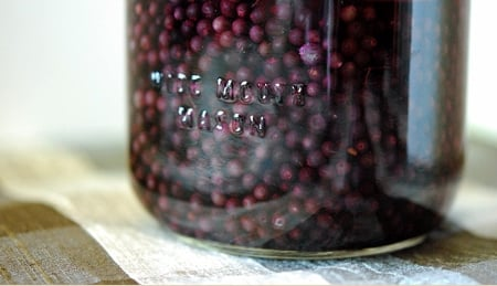 elderberry liqueur in a jar