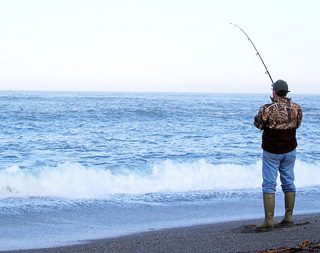 surfperch fishing on Bodega Bay