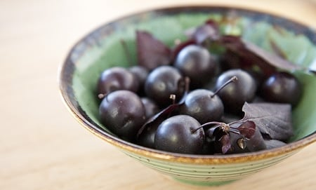 A bowl of wild plums