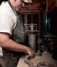 Hank Shaw making venison sausage