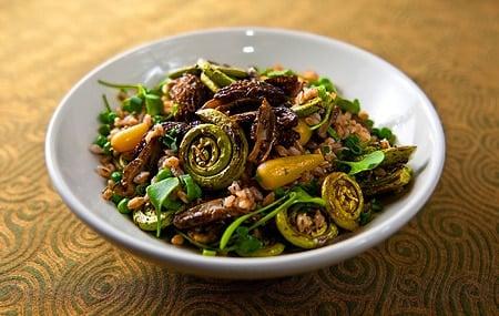 morel mushroom salad recipe