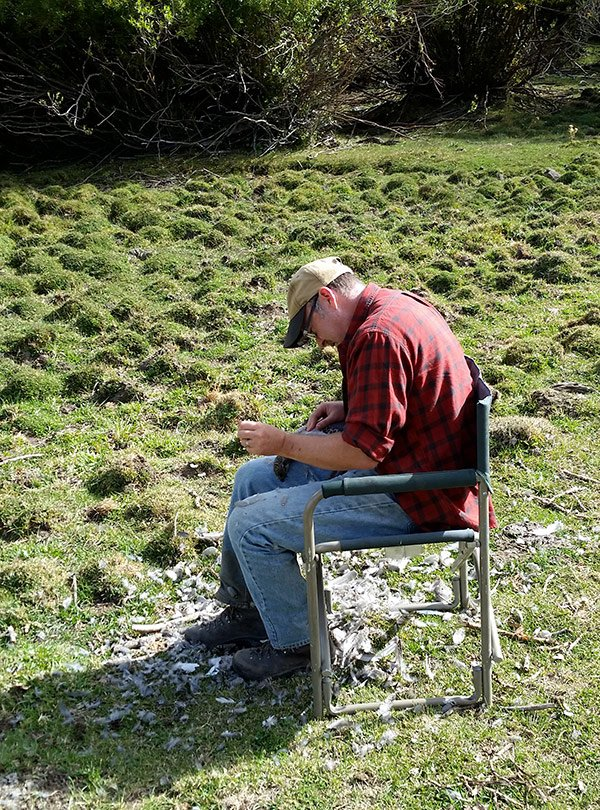 Hank Shaw plucking a sage grouse.