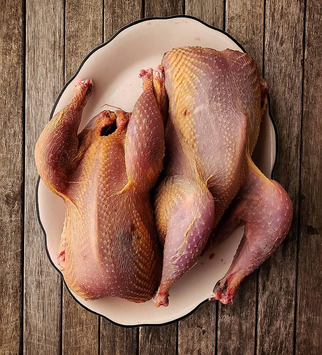 Plucked pheasants on a platter