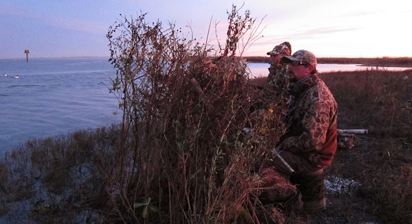 Waiting for ducks behind a makeshift blind.