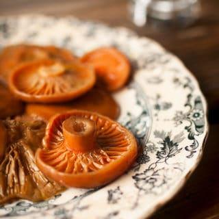 fermented mushrooms