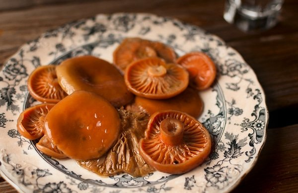 Close up of fermented mushrooms on a plate.