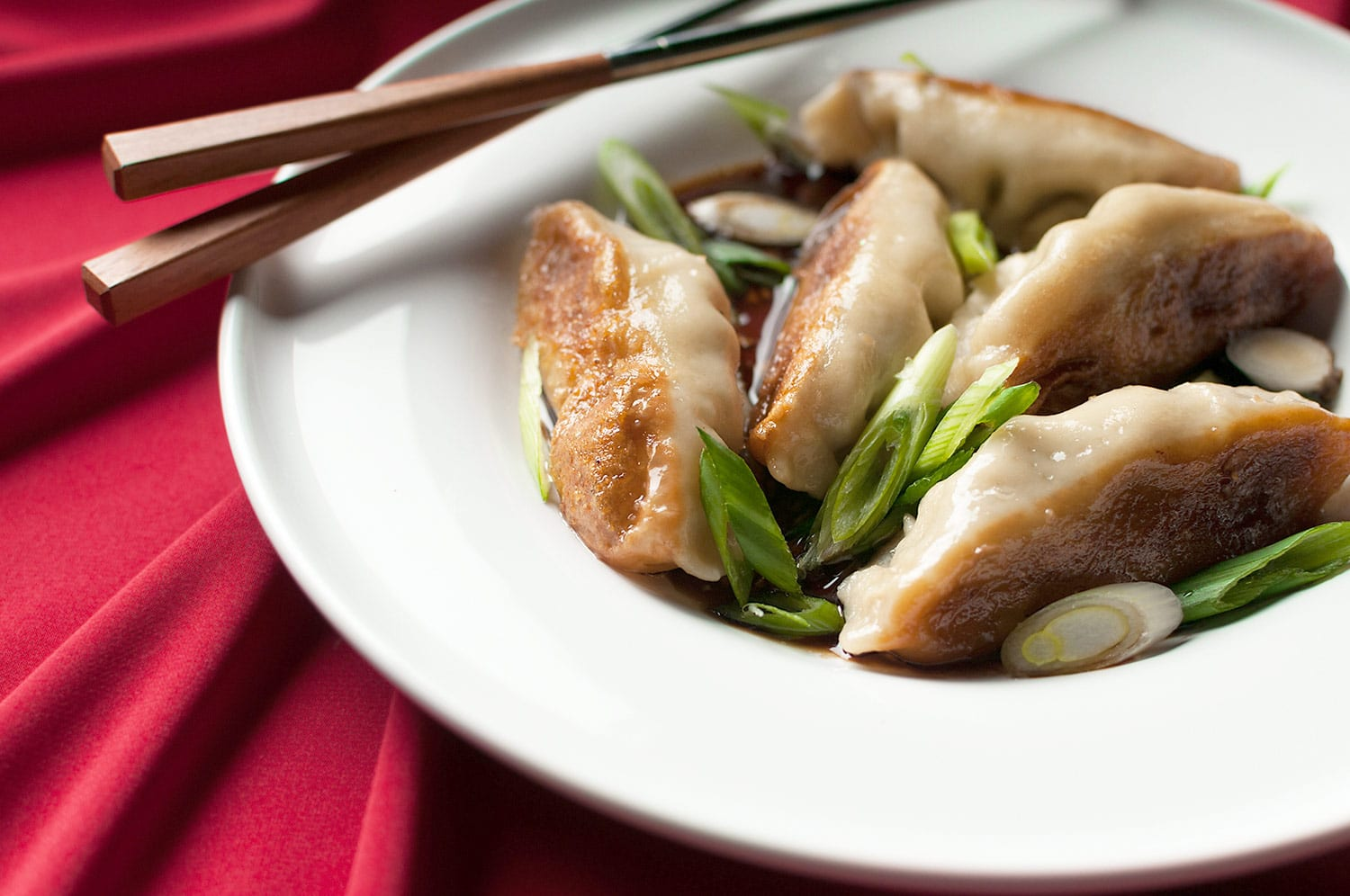 Asian Pot Sticker Recipes