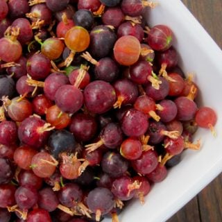 rocky mountain gooseberries