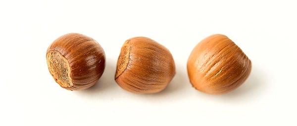 three freshly harvested wild hazel nuts