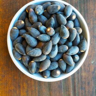 A bowl of blue oak acorns
