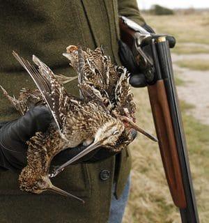 Game Bird Recipes - Pheasant, Quail, Turkey