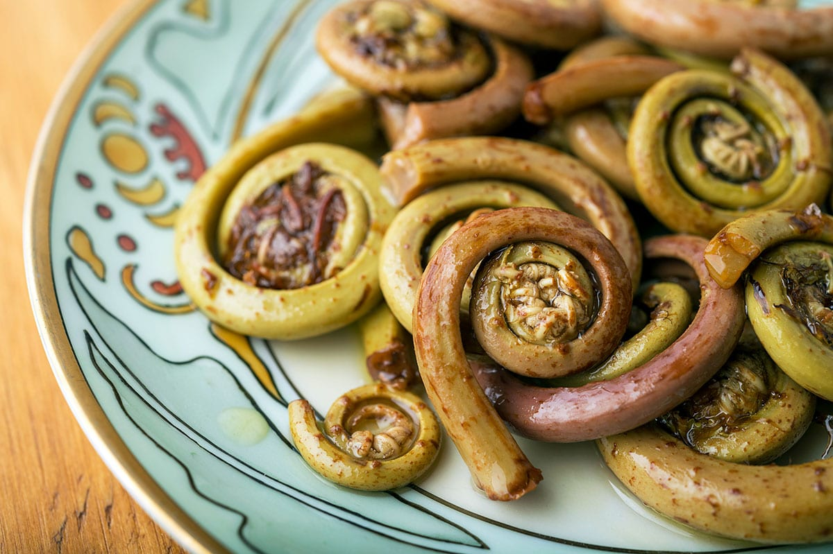 Closeup of pickled fiddleheads on a plate