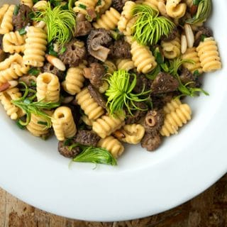 pine pollen pasta with morels and fir tips