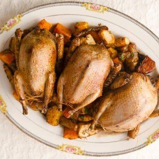 Roast Pigeon