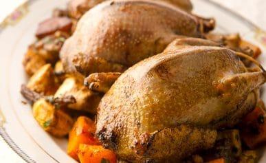 roast pigeon recipe