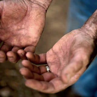 Hank Shaw's hands