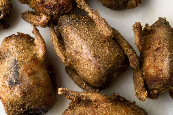 Fried doves recipe