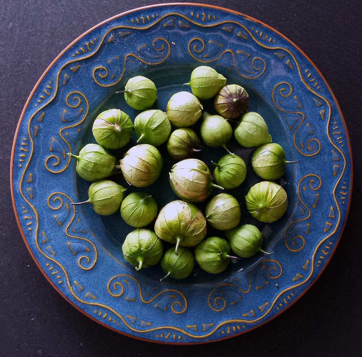 Wild tomatillos on a plate